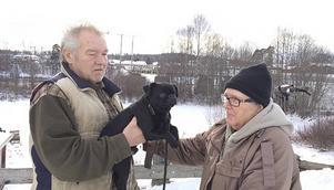 Åke och Ingegerd Nyström med hunden Godis som Isa skulle paras med.