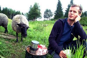 Olov Östling kör taxi till vardags. Men fåren är hans stora passion och det är tack vare honom och hans fru Eleonore Holmberg som får nu betar även i Duved.