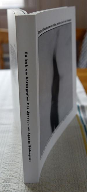 För några år sedan utkom Agneta Söderqvists bok om Per Jonsson,