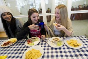 Vi måste värna skolbarnens luncher, givetvis ska unga växande barn få bra och god mat – i möjligaste mån svensk! Givetvis ska det svenska jordbruket vara bidragande till det, skriver Niklas Johansson.