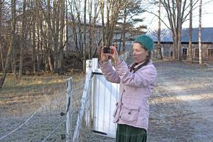 Anna-Christina Hunt gillar att ta naturbilder. Nu hoppas hon att hennes och andras bilder ska utgöra grund för en miljökalender.