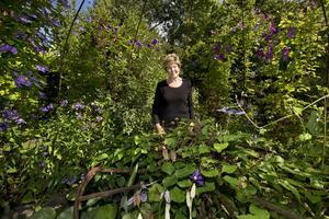 """Grönskande oas. Monica Yngvesson och maken Karl-Erik har under de 40 år de har bott på gården förvandlat trädgården till en grönskande oas där bladen och formerna är lika viktiga som blommorna. """"Min man brukar säga att att han är trädgårdsintresserad och att jag är nörd"""", säger Monica. Trädgården pryds också av gamla jordbruksredskap och andra vackra installationer."""