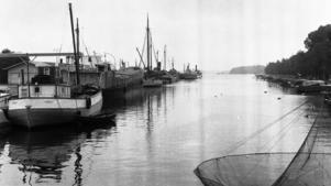 Norrtälje hamn år 1950.