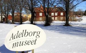 Kommunstyrelsens beslut om Ottilia Adelborgsmuseet har fått organisationerna som driver den att reagera. foto:?Seth Jansson