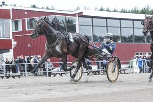 Volstead med Örjan Kihlström i sulkyn vann V64-3.