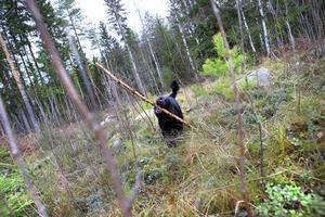 Ledig förmiddag med grannens hund Akilles på promenad i skogen i Forsbacka.