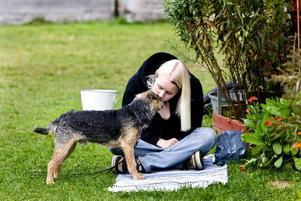 SÅ JA. När borderterriern Bozze gör som Johanna Bedoire vill får han hundgodis. Men ibland blir matte så stolt att hon får en puss också.