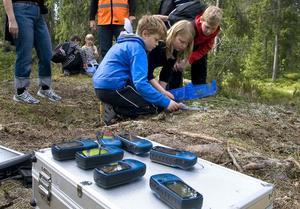 Lukas Berglund, Tilda Ericsson och Emil Björkman lär sig växter och GPS av Naturbruksgymnasiet.