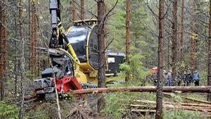 Utbildningsdag med skogsägare. Med en skördare visas hur flerträdsavverkning kan ske.