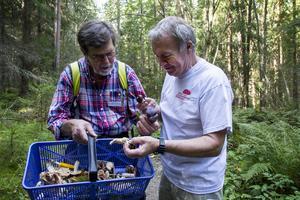 Per-Erik Andersson och Sven-Åke Johnson undersöker sina fynd.