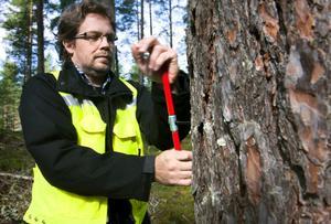 Trädets ålder och tillväxt kontrolleras