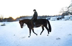 """""""URUSELT"""". Sofia Tjernström har ridit i Lervik i sju år och tävlar i dressyr. Hon tycker att det är """"uruselt"""" att regeringen sagt nej till ett nytt ridhus och en ny tävlingsbana. På onsdagen tränade hon och hästen Mr Bean utomhus på grund av platsbristen i den nuvarande ridhallen."""
