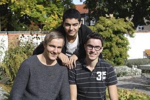 Fr v.: Mattias Stridh, Navid Haddad och Gustav Sobel.foto: per-ola olsson