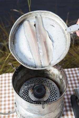 Det är svårt att steka en nyfångad fisk. Stelheten gör att fiskköttet vill dra ihop sig och då är det svårt att steka den. Vill du laga fisken direkt vid stranden så baka den i glöden i ett foliepaket.