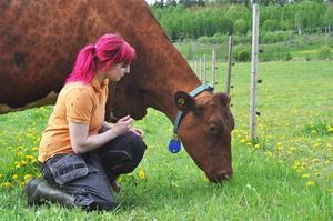 """Ko-kärlek i Bergby. 24-åriga mjölkbonden Lina Sjöberg kan inte tänka sig ett liv utan djuren. """"Om jag inte kan sova åker jag till ladugården. Djur är inte så verbala, de förstår och kommunicerar på andra sätt. Och kor är jävligt smarta djur. """""""