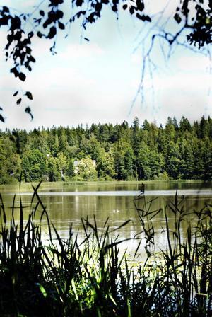 Marnästjärn är den mest förorenade sjön i Dalarna trots att Asea (i dag ABB) stoppade utsläppen av kvicksilver för 45 år sedan