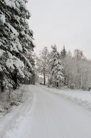 Erkänner att jag inte längtade att ta mig ut med bilen i morse, men belöningen var att få uppleva lite naturens under. En vackert vit vinter väg och snötäckta träd och man anar en fin västmanländsk timmerstuga bortom träden.