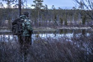 Snart går solen ner. Anders Lifland Nørgaard tittar en sista gång vid dammen, men ingen bäver syns till.