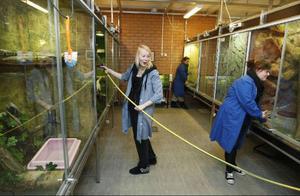 Eleverna på djurskötarlinjen får hjälpa till med praktiska saker som matning och städning i djurhuset.