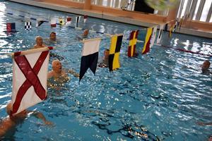 Förutom att agera nät står det också Valrossarna på flaggspelet som hänger över simbassängen.