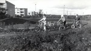 Bjurhovda 20 oktober 1981.