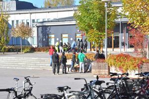TAS BORT. Minskade elevkullar och tapp till andra skolor gör att tre program vid Högbergsskolan tas bort från höstterminen 2012.