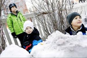 Länstidningen pratar vatten och parasiter med Johannes Nordell, Tristan Lindberg och David Hellquist som bygger i snö utanför Norra skolan.