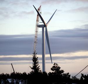 """""""Utan subventioner från oss konsumenter skulle inte ett enda vindkraftverk ha kommit till"""", skriver skribenten."""