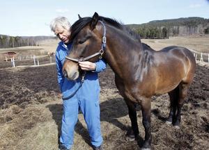 Ingemar Persson och hästen Järvsö Jörgen förföljdes av björn över en kilometer när de tränade på måndagen. Men varken Ingemar Persson eller hästen fick några skador efter björnjakten.