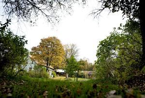 Tidsepok. Hagtorp, ett tidstypiskt torp från 1800-talet med en ännu äldre drängstuga.