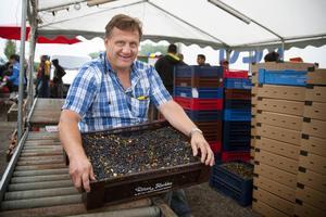 – Vi köper bara av fria plockare. Vi har inga anställda, säger Bo Axelsson, produktionsansvarig på bäruppköparföretaget Blommor och bär i Söderhamn.