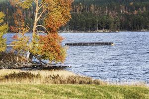 Det är fem odlingskassar som placerats ut i Gärdviken. Några kilometer från den smittade odlingen i Linjeviken, på andra sidan näset i byn Gärdnäs. Det finns ett tiotal fastboende och ett flertal fritidshus på halvön.