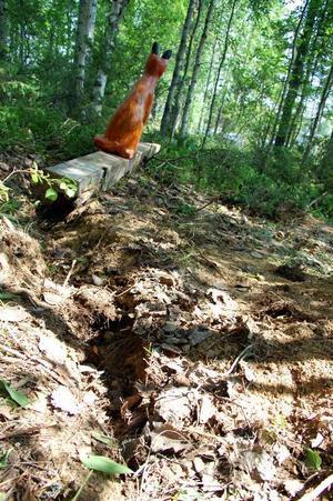 Någon hade grävt upp räven ur sitt stöd i marken och vält den.