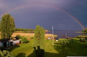 En söndag i juni minuterna innan skyfallet drar in över Tidö Lindö.