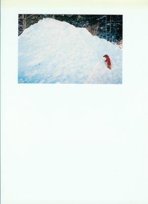 Taxen Buster klättrar uppför den hiskeliga vallen som nu är ett minne blott....
