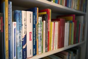 Astrid Lindgren skrev ett stort antal barnböcker under sin livstid. Hon har översatts till 95 språk.