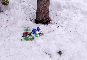 Alla kan hjälpas åt att hålla rent i naturen.foto: jussi svensson
