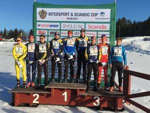 Hugo Jacobsson, Jonas Eriksson och Martin Johansson körde hem segern till Dalarna i distriktsstafetten. Tvåa kom Örebro län och trea blev Småland.