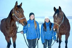 I mars byter Rebecka Eriksson och Johanna Sae-tang Dicander, här med hästarna Wazzup Isaac och Nobby, vintern i Alsen mot sommaren i Australien. Praktik