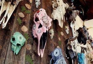 På väggen hänger allt från älg- och koskallar till mindre djur som grävling och rådjur.