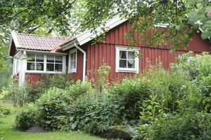 Idylliskt. Moas torp ligger på gränsen mellan Ösmo och Sorunda. Det finns bevarat som Moa Martinson lämnade det 1964. Foto: Frida Wänelöf