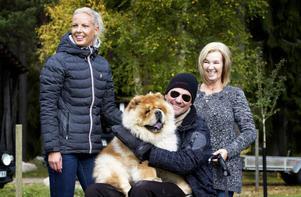 Linda Johansson, Thomas Enestrand och Ann-Christine Andersson från Gustafs tillsammans med Dika Tchou.