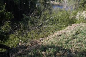 Nipraset efter vägen mäter ungefär 130 meter.
