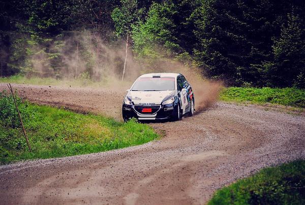 SMK Salas Elias Lundberg navigerade skogarna i Gävle och Sandviken bäst av alla, och tog hem segern i JSM-deltävlingen med god marginal.