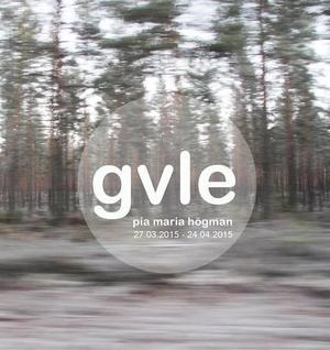 Pia Maria Högmans utställning om hembygden i Gävle och Gävleborg öppnar på fredag, under en kvinnodominerad konsthelg.