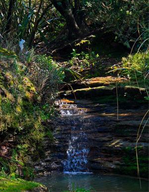 Vattenfall i Nya Zeeland. Jobbar som barnflicka i 6 månader och var på en promenad medan barnen var i skolan och hittade detta vackra vattenfall och kunde inte låta bli att fota det.