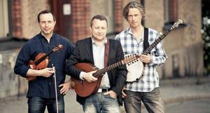 Quilty bildades 1993 och är en av få professionella musikgrupper i Sverige som specialiserat sig på irländsk folkmusik.