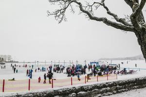 I det lätta snöfallet som påminde om ett svagt duggregn fylldes det på med folk när Vinterparken öppnade.