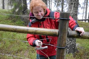 Bra kurs. Caroline Lundmark fick under kursen lära sig att göra ett stängsel, som kan hålla vargen borta från tamdjur.  BILD: INGVAR SVENSSON