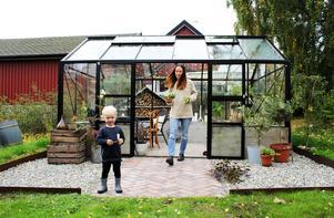 I vinter kommer förmodligen en julgran att få husera i växthuset.